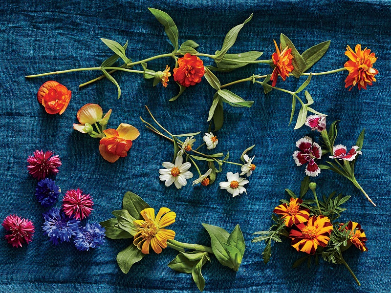 Types of edible flowers