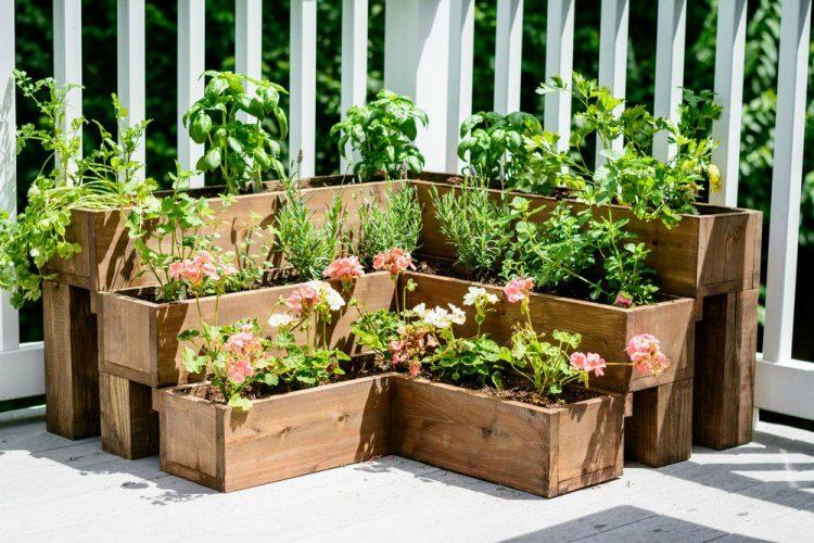 homemade urban garden