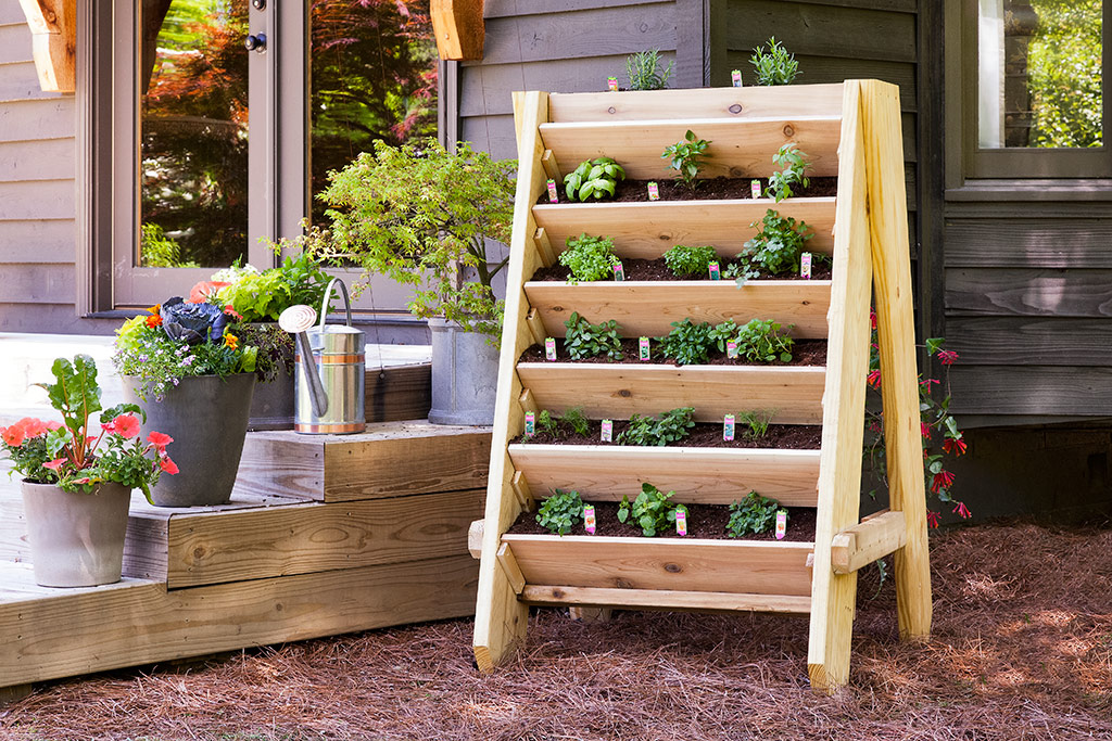 How to make a homemade urban garden – the best ideas