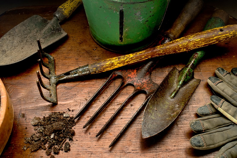 12 gardening tools that you must have