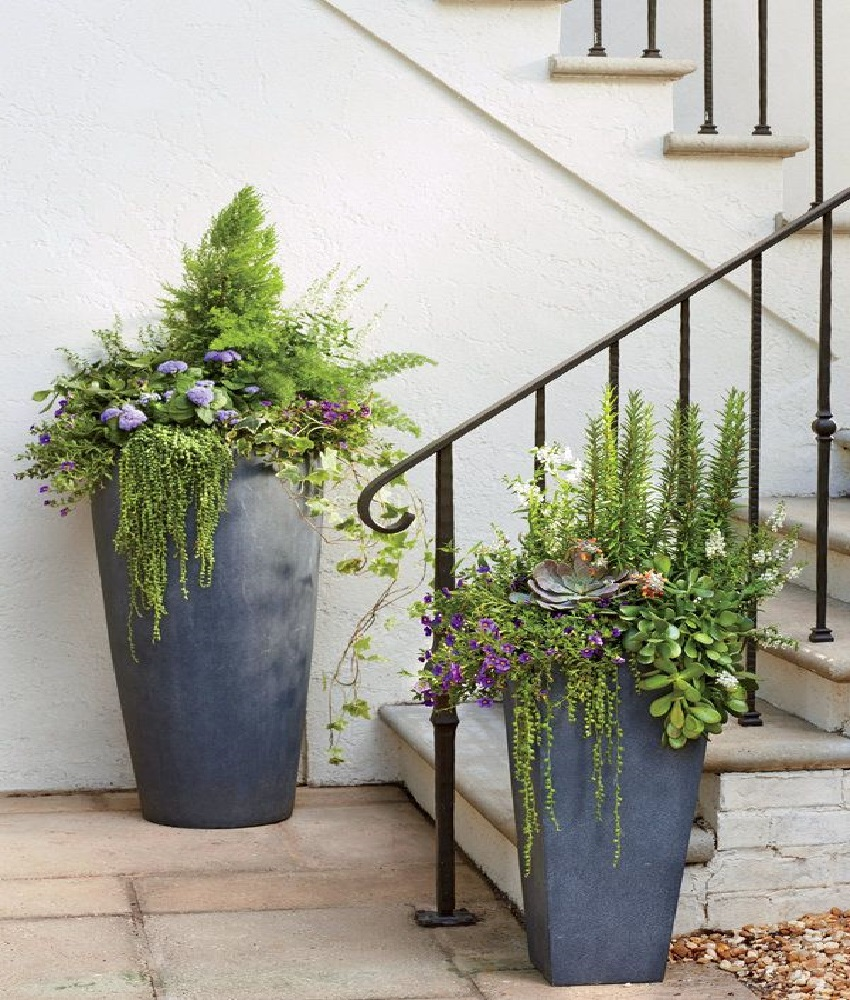 Large tall planters – on of the easiest ways to enhance your garden